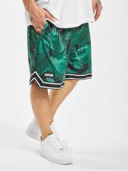 Cayler & Sons shorts Palm Leafs zwart