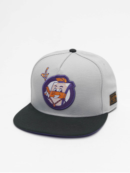 Cayler & Sons Snapback Cap WL Make It Rain grey