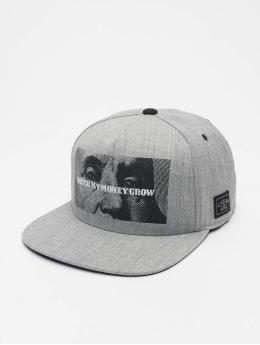 Cayler & Sons Snapback Cap Wl Watch It Grow grey