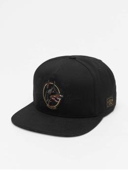 Cayler & Sons Snapback Caps WL Whooo czarny