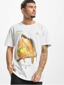 Cayler & Sons T-Shirt Faucon white