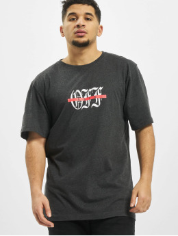 Cayler & Sons T-Shirty WL F Off  szary