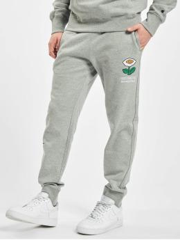 Champion Spodnie do joggingu Rochester x Super Mario Bros  szary