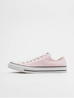 Converse Sneakers Chuck Taylor All Star Ox rosa