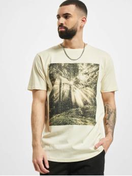 Denim Project T-Shirt Dp Forrest beige