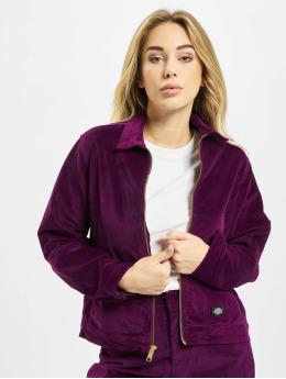 Dickies Демисезонная куртка Sharpsburg  пурпурный