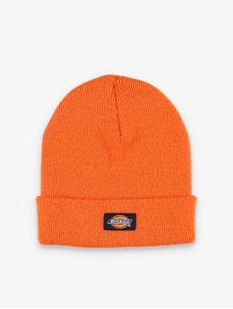 Dickies Beanie Gibsland oranje