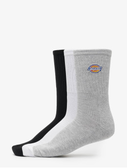 Dickies Calcetines Valley Grove  colorido
