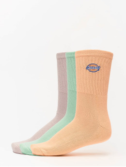 Dickies Chaussettes Valley Grove multicolore