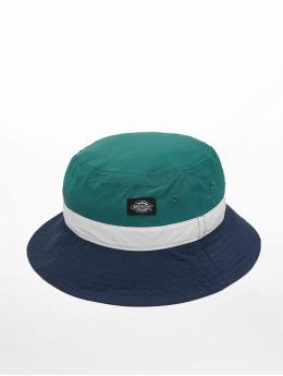 Dickies Hat Freeville  green