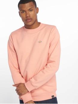 Dickies Puserot Seabrook  roosa