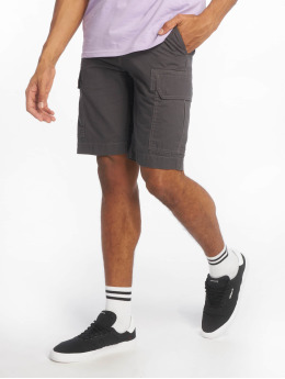 Dickies Shorts New York grigio