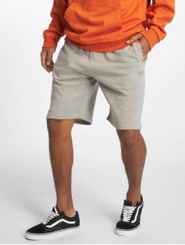 Dickies shorts Glen Cove grijs