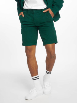 Dickies shorts Fabius groen