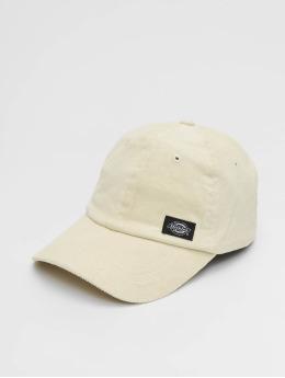 Dickies Snapback Caps Amenia  bezowy