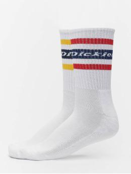 Dickies Socken Genola 2-Pack weiß
