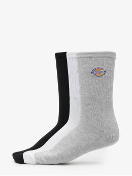 Dickies Socks Valley Grove  colored