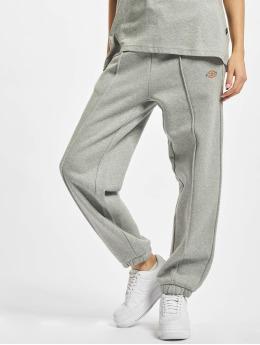 Dickies Sweat Pant Mapleton  grey