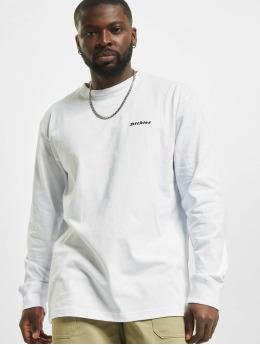 Dickies T-Shirt manches longues Loretto  blanc