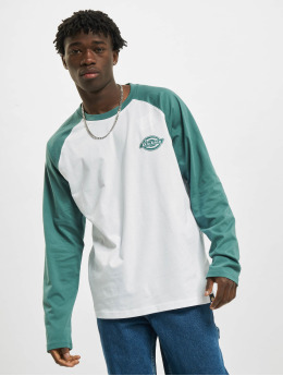 Dickies T-Shirt manches longues Cologne vert