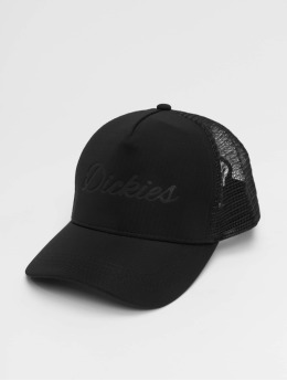 Dickies Trucker Cap Cairo black