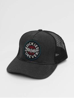 Dickies trucker cap Andes zwart