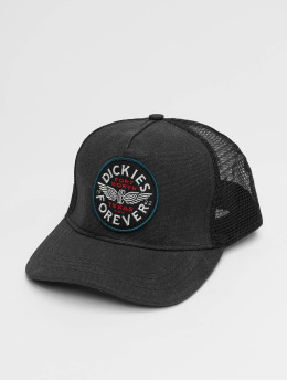 Dickies Trucker Caps Andes czarny