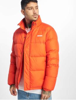 Dickies Vattert jakker Oakvale  oransje