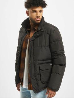 Dickies Winter Jacket Olaton  black