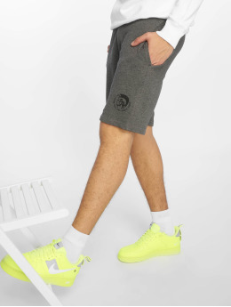 Diesel Pantalón cortos UMLB-Pan gris