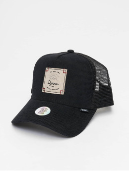 Djinns Casquette Trucker mesh HFT Corduroy Nature High Fitted noir