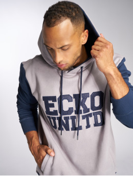 Ecko Unltd. Hoody Central Valley grau