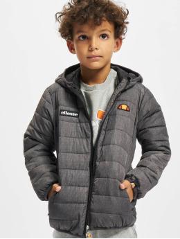 Ellesse Зимняя куртка Regalio Padded серый