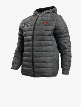 Ellesse Gewatteerde jassen Lombardy  grijs