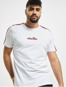 Ellesse T-shirts Carcano  hvid