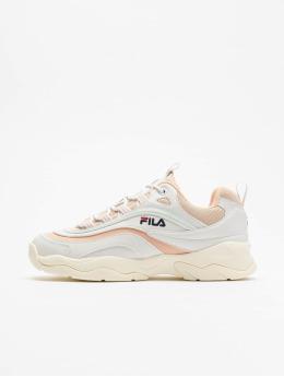 FILA Sneakers Ray hvid