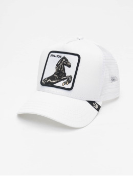 Goorin Bros. trucker cap Stallion  wit