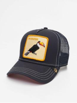 Goorin Bros. Trucker Caps Take Me To niebieski