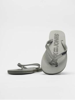 Jack & Jones Badesko/sandaler jfwLogo Pack 1 grå