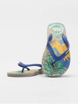 Jack & Jones Claquettes & Sandales jfwAnimal Print Pack multicolore