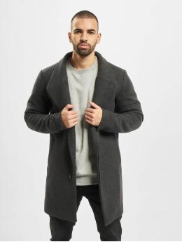 Jack & Jones Coats jprCollum Wool  gray