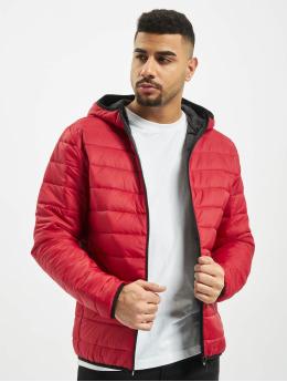 Jack & Jones Puffer Jacket jjeEric red