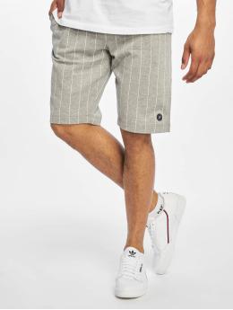 Jack & Jones Shorts jjiPinstripe grau