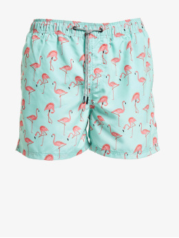 Jack & Jones Shorts jjiAruba  grün