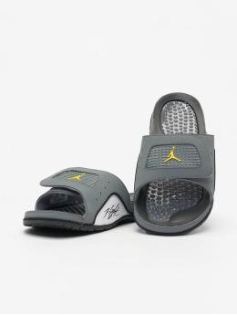Jordan Chanclas / Sandalias Hydro IV Retro gris