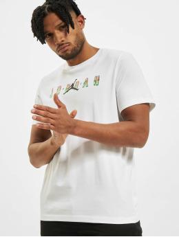 Jordan t-shirt M J Sprt Dna Hbr Ss wit
