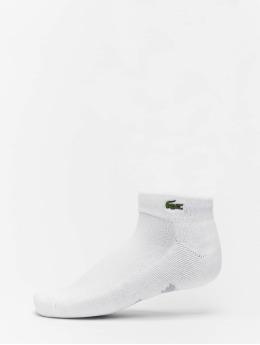 Lacoste Chaussettes Sport blanc