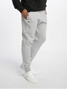 Lacoste Jogging kalhoty Logo šedá