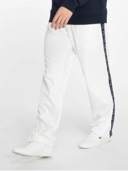Lacoste Pantalón deportivo Croco Stripe blanco