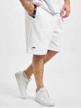 Lacoste Shorts Sport  weiß